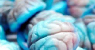 پاستیل مغز ایرانی