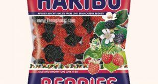 پاستیل تمشک هاریبو