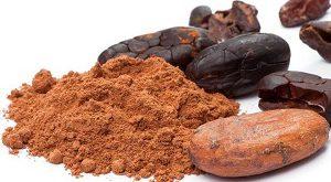 نرخ پودر کاکائو هلندی
