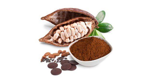 خریدار پودر کاکائو اسپانیایی