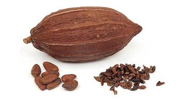 عرضه پودر کاکائو آلکالایز