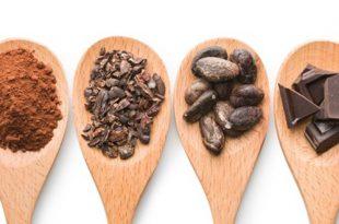 واردات پودر کاکائو هلندی
