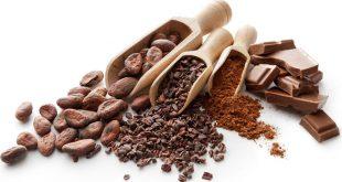 پودر کاکائو داتج